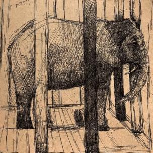 elephantdrawingzoo19