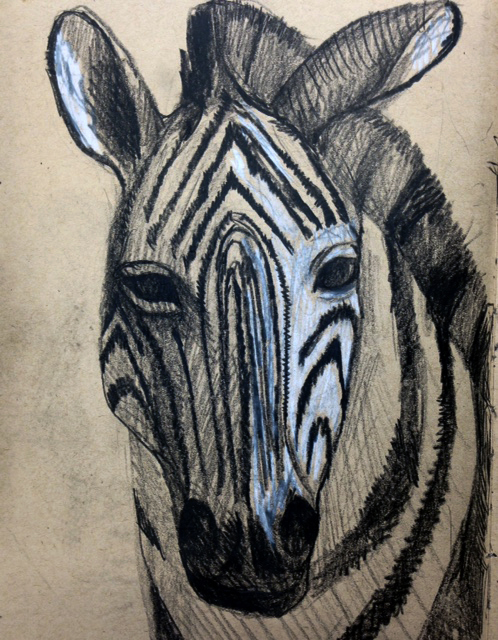 Zebra drawing - pencil