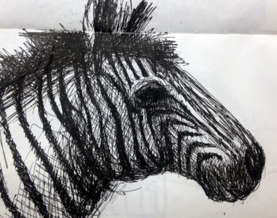 Zebra drawing - ink