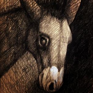 Bassano's donkey