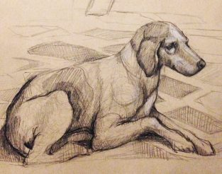 Tintoretto's dog